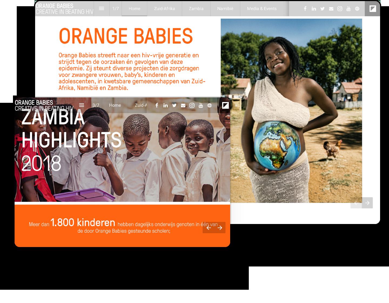 interactive-example-annualreport-orangebabies