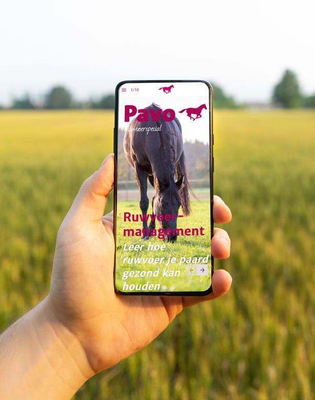 Pavo-phone-NL1