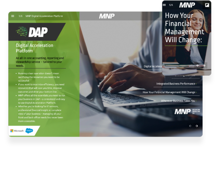 interactive-report-example-mnp